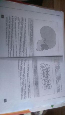 Gnatofizjologia układu stomatognatycznego