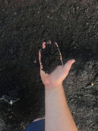 Ziemia ogrodowa, czarnoziem, torf