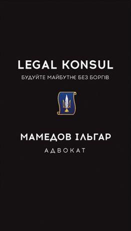 Адвокат. Кваліфікована юридична допомога. Сімейні справи, ПДД, та ін.