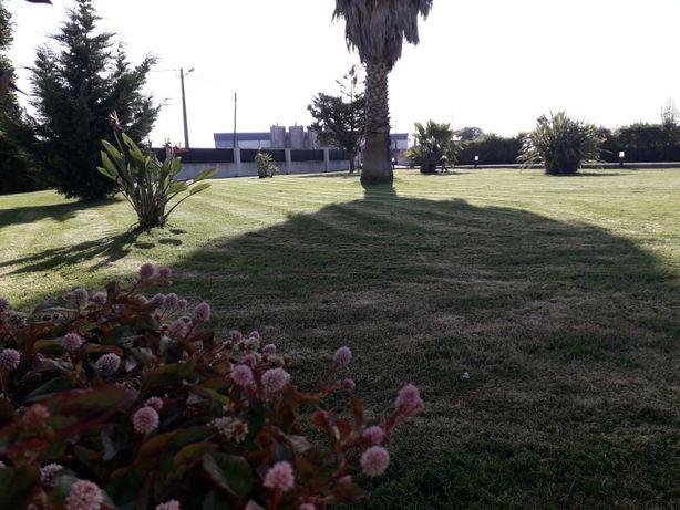 Jardineiro.  Manutenção e construção de jardins