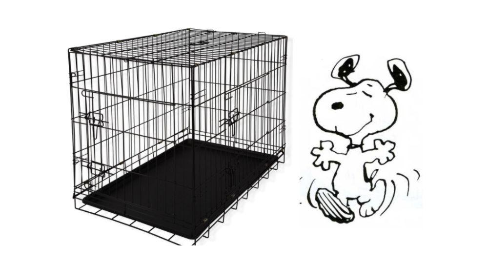 Vende-se jaula - gaiola Novas para cães ou outros animais. Eiras E São Paulo De Frades - imagem 1