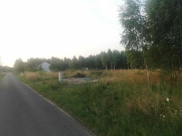 działka z mediami, przy asfalcie, blisko lasu