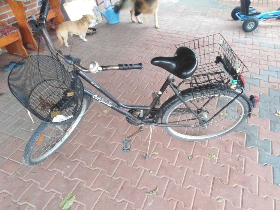 Rower damski  damka Witaszyce - image 1