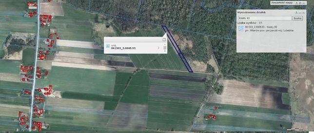 Kostry 0,59 ha przy lesie, niedaleko zabudowań