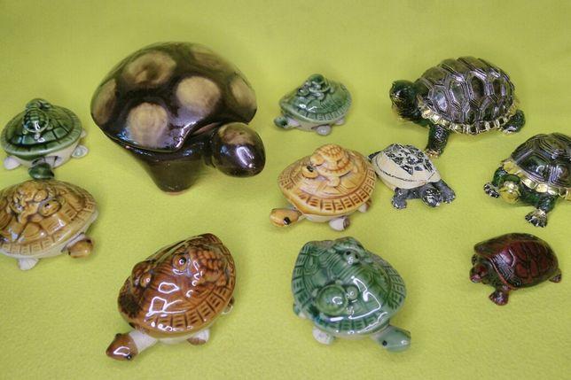 Черепахи - Семейство Черепах !!