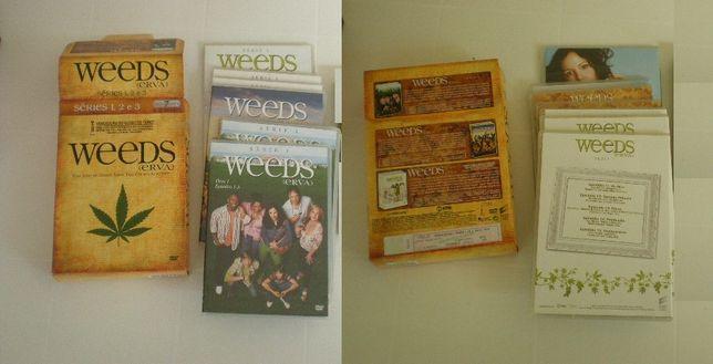 Weeds / Erva - série 1 até série 3