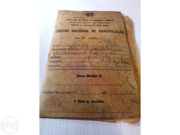 Documentos / Licença canidea - 1985