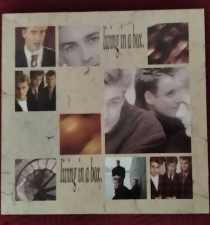 Płyta winylowa - Living In The Box