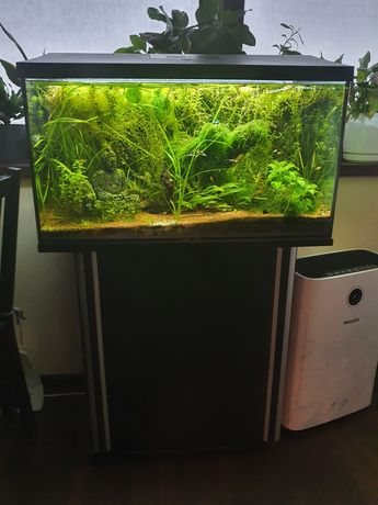 Akwarium, szafka i pokrywa Aquael LED 105l