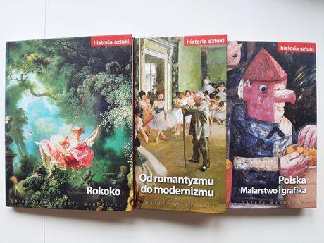 Książki Historia sztuki Rokoko, Polska malarstwo i grafika