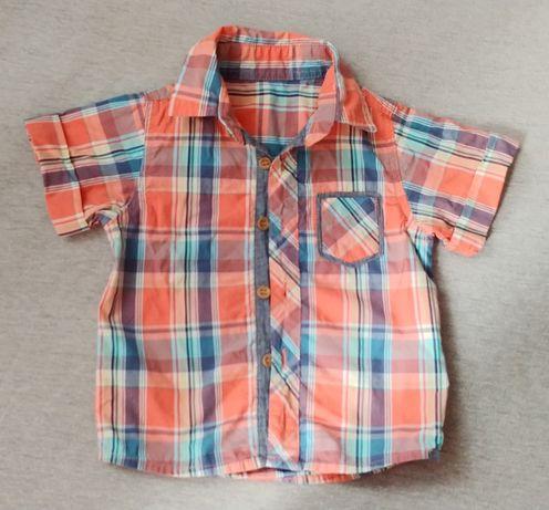 Koszula dla chłopca rozm 80
