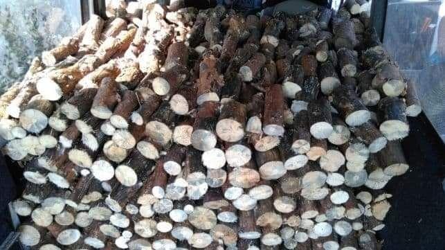 Drewno Opałowe Sosna Brzoza Świerk
