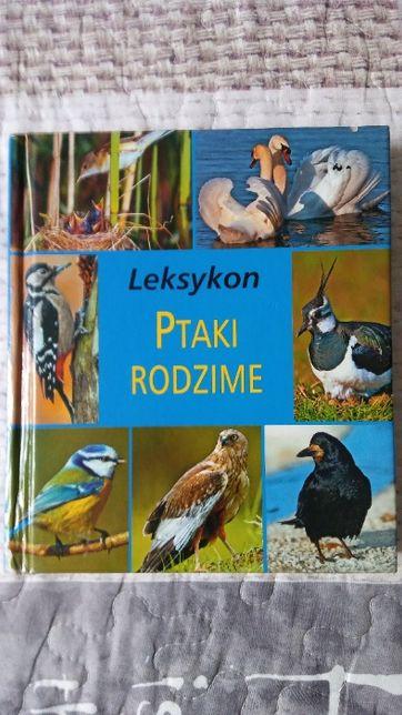 Leksykon Ptaki Rodzime