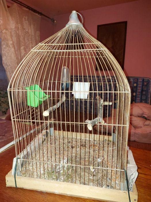 klatka dla papug Bytom - image 1