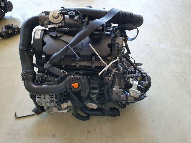 Motor Volkswagen 1.9 TDI 2006 de 105cv, ref BXE