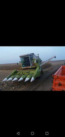 Надаєм послуги по уборці зернових культур кукурудза