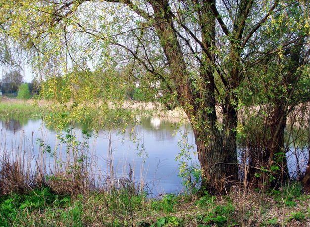 Продам участок село Семеновка