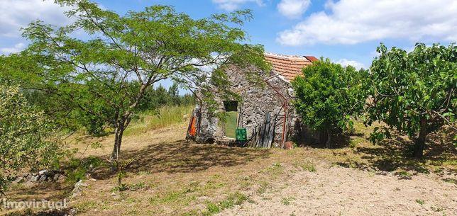 Quinta com 66.425m2, em Vila Boa do Mondego / Celorico da Beira