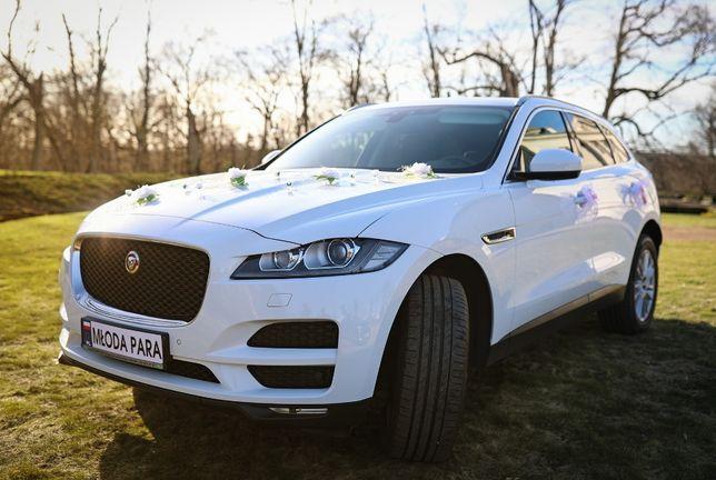 Auto do ślubu - piękny Jaguar