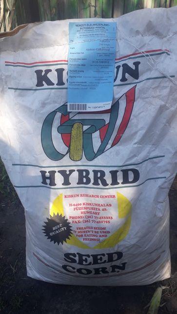 Семена красной кукурузы Kiskun