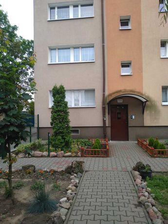 Polecam mieszkanie ul.Grochowska -  blisko Uniwersytet Medyczny i UAM,