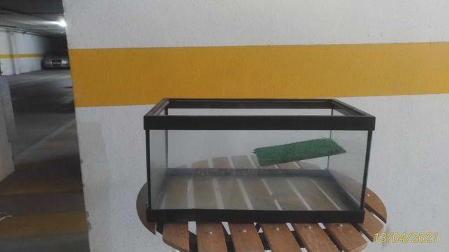 Terrario e acessórios para tartaruga agua quente