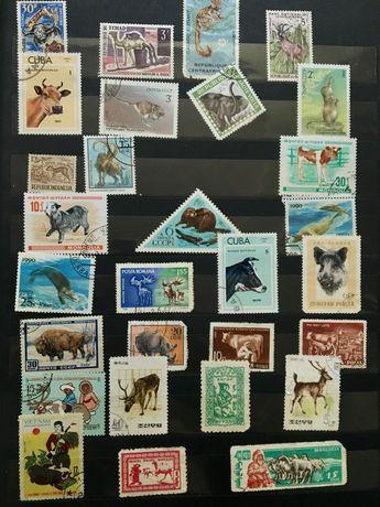 Почтовые марки флора Польша, СССР, Монголия, Гвинея, Чехословакия,