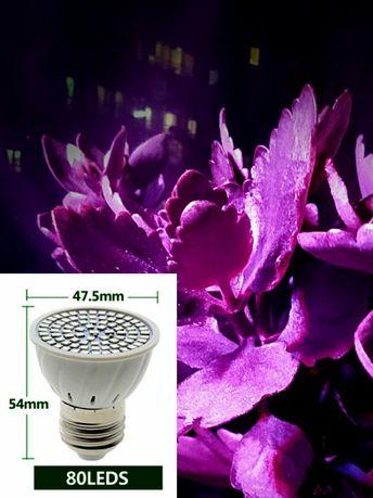 Фитолампы. Лампа для растений. Ультрафиолетовый свет