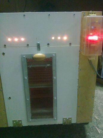 Inkubator do jajek
