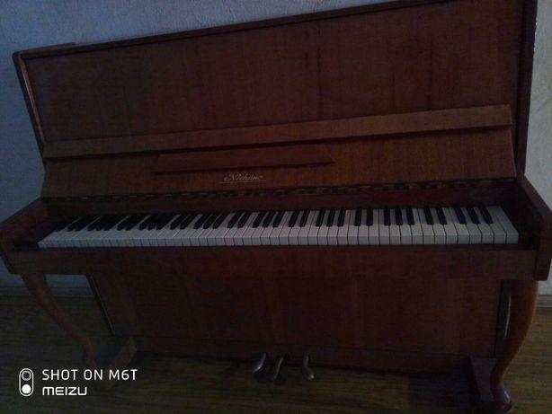 pianino  Noeturno