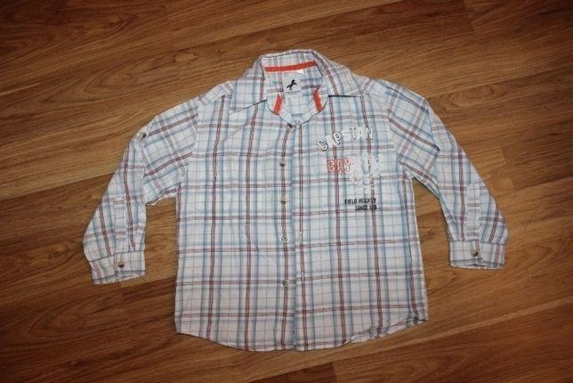 Рубашка на мальчика 110 Palomino