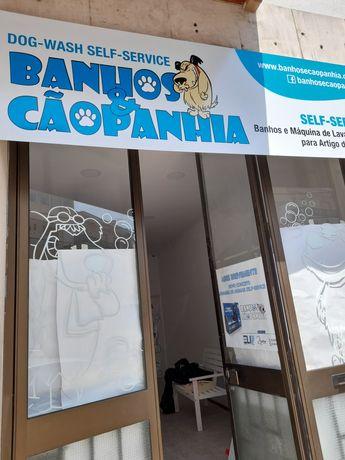 Abra o seu Negócio Lavar animais domésticos Self Service