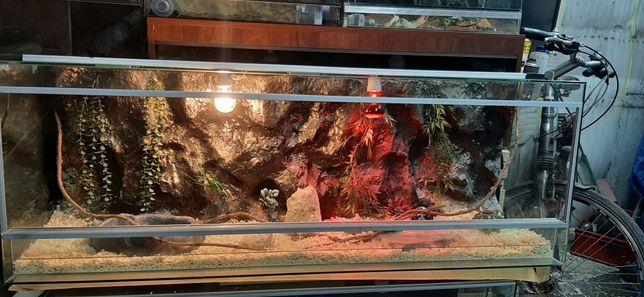 Terrarium 140x50x40  Super Stan Jak Nowe Agama Gekon Wąż