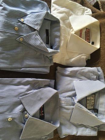 Camisas de marca para o sexo masculino Lote negociavel