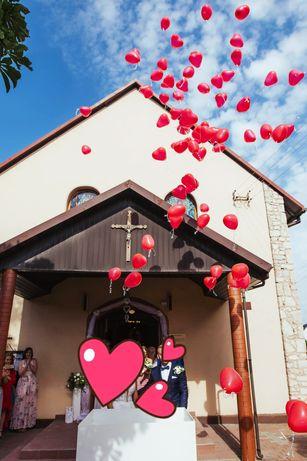 Pudełko/skrzynia prezent z balonami + gratis  czerwony dywan
