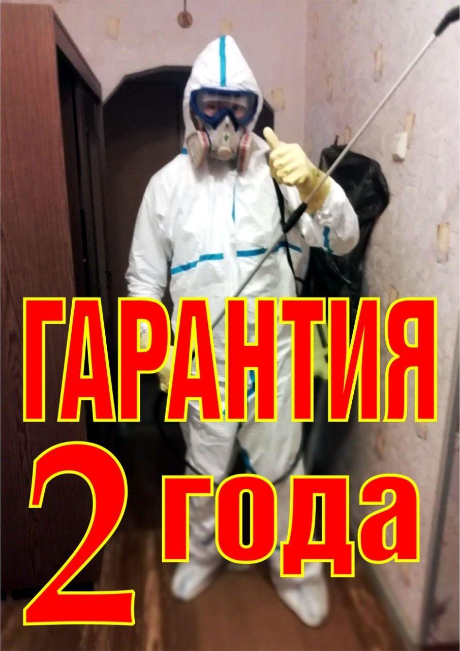 Уничтожение Травля тараканов прусаков клопов блох крыс Дезинфекция