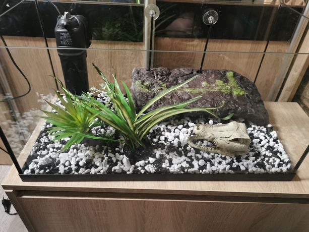 Akwarium terrarium dla żółwia