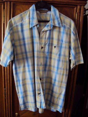 Camisa Salomon - L