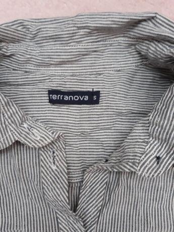 Sprzeda koszulę Terranova