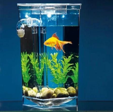 Самоочищающийся аквариум для рыбок