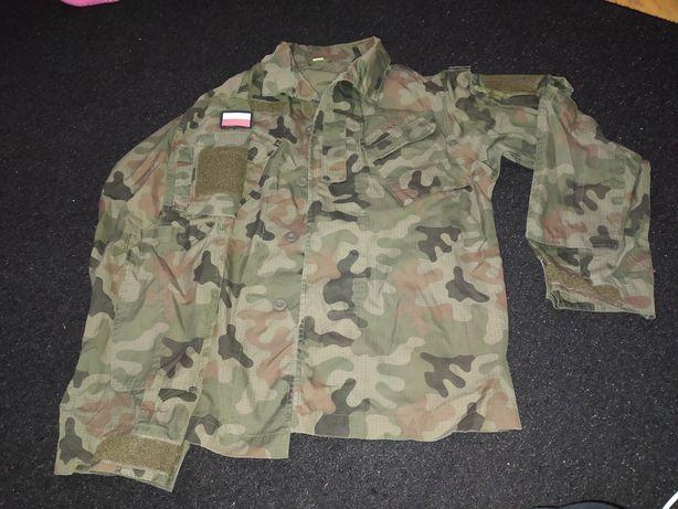 Wojskowy mundur polowy letni (góra)