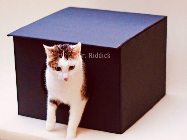 Domek budka buda dla kota na dwór ocieplana mięciutka w środku