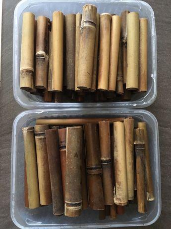 Bambusy wypraperowane do akwarium krewetkarium