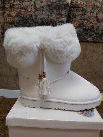 Зимние сапоги. Размер 38
