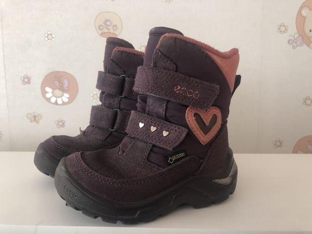 Продам детские ботинки Ecco