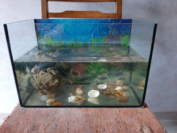 Акваріум для рибки / черепахи