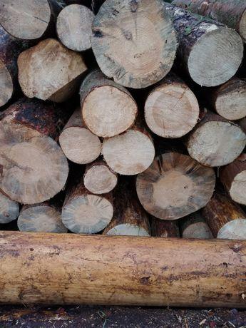 Drewno opałowe iglaste.