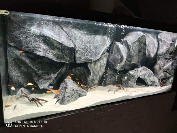 Tło strukturalne 3d do akwarium, imitacje skały,moduły,zabudowa filtra