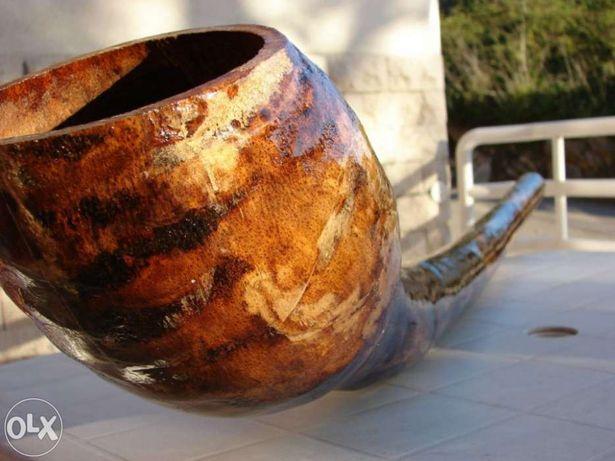 Didgeridoo em Agave(curvo)