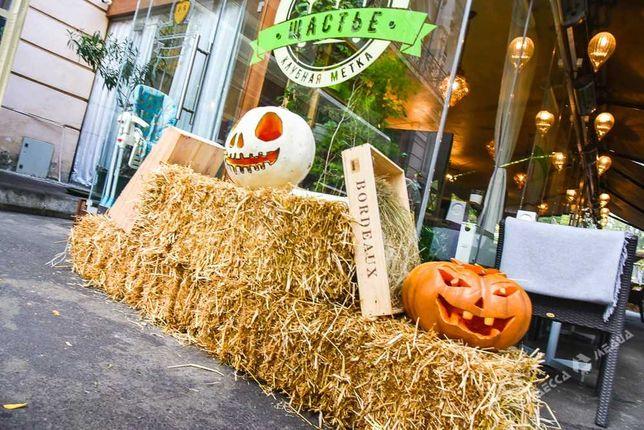 Золотистое сено соломы для декорации Хэллоуин/Halloween Доставка